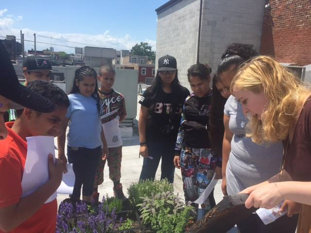 Stetson Middle Schoolers learn about growing their own produce alongside Feast Your Eyes staffer, Amelia! (via Feast Your Eyes Facebook page).