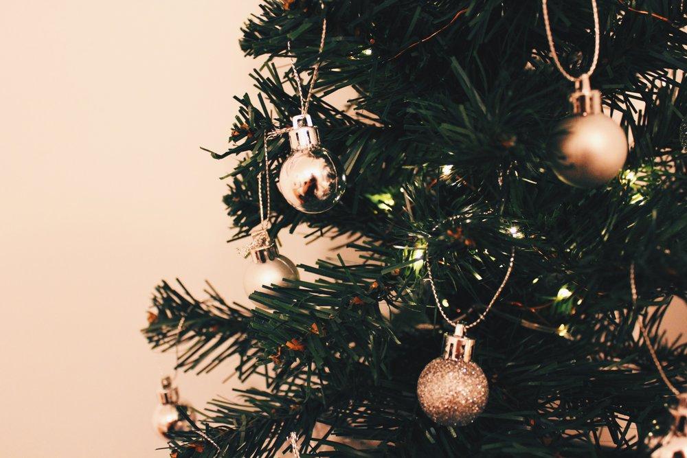 Photo Dec 01, 1 24 31 AM.jpg