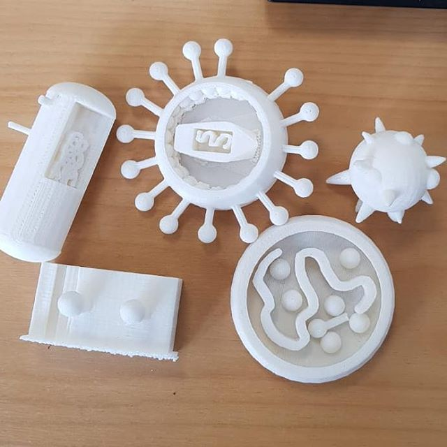 3D PRINTED MICRO-ORGANISMS ` Resewrched and designed by students from Taita College as part of their NCEA Level 1 Science project. Always a pleasure working with you guys. 😁👌🏽 ` #3dprinting #3dprinted #microorganism #plastic #fungi #virus #bacteria #school #ncea #nz #college #research #science