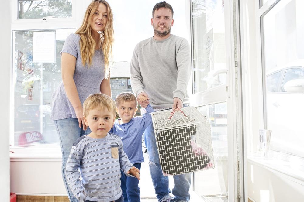 Bridge-vets-Services-family