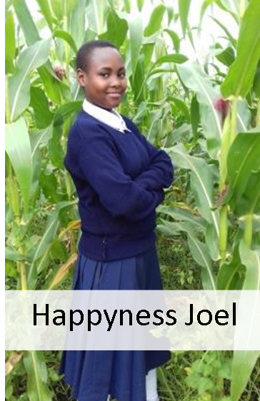happyness joel.png
