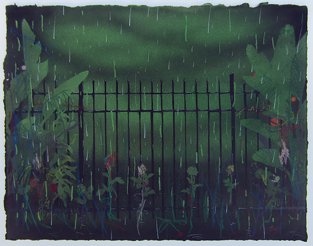 This Weird Fence 016