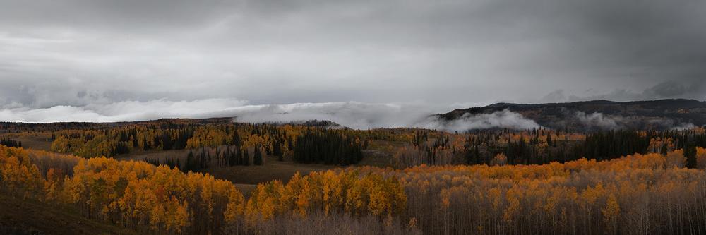 Classic dusky grouse terrain.
