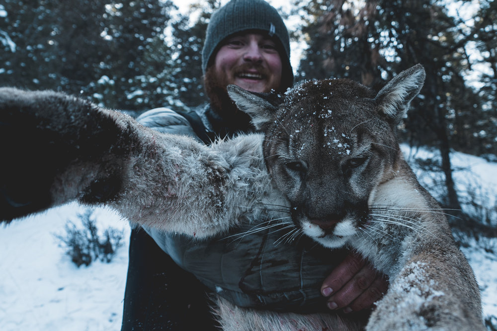 mountain-lion-hunter