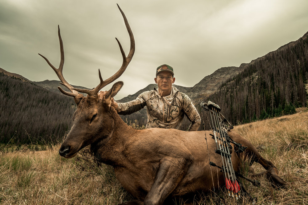 bowhunter hunting bull elk