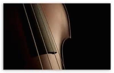Double Bass.jpg