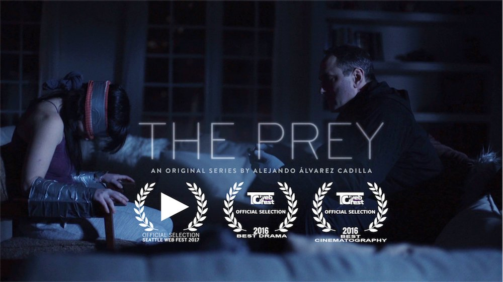A woman must draw upon every mental, physical and emotional resource she possesses to escape the predator that has invaded her home.   Presented with English Subtitles