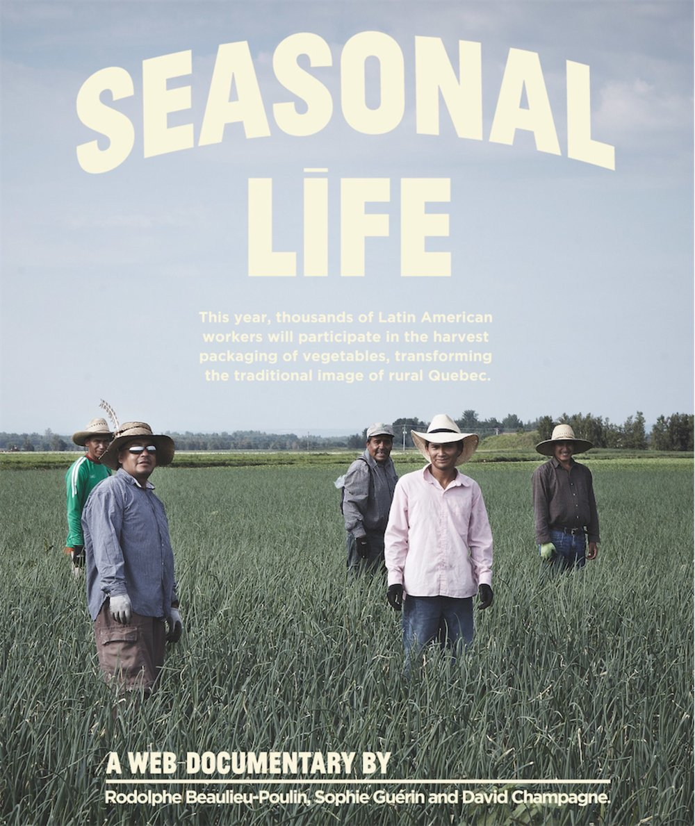 This year, thousands of latin-american migrant workers will participate in the harvest packaging of vegetables, transforming the traditional image of rural Québec. Seasonal Life provides an immersion into the daily lives of these men's reality. Presented with English Subtitles