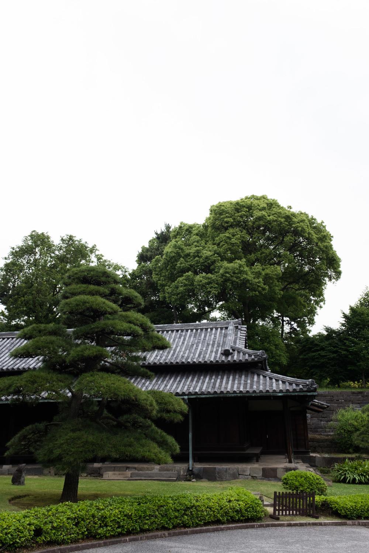 tokyo-0019.jpg