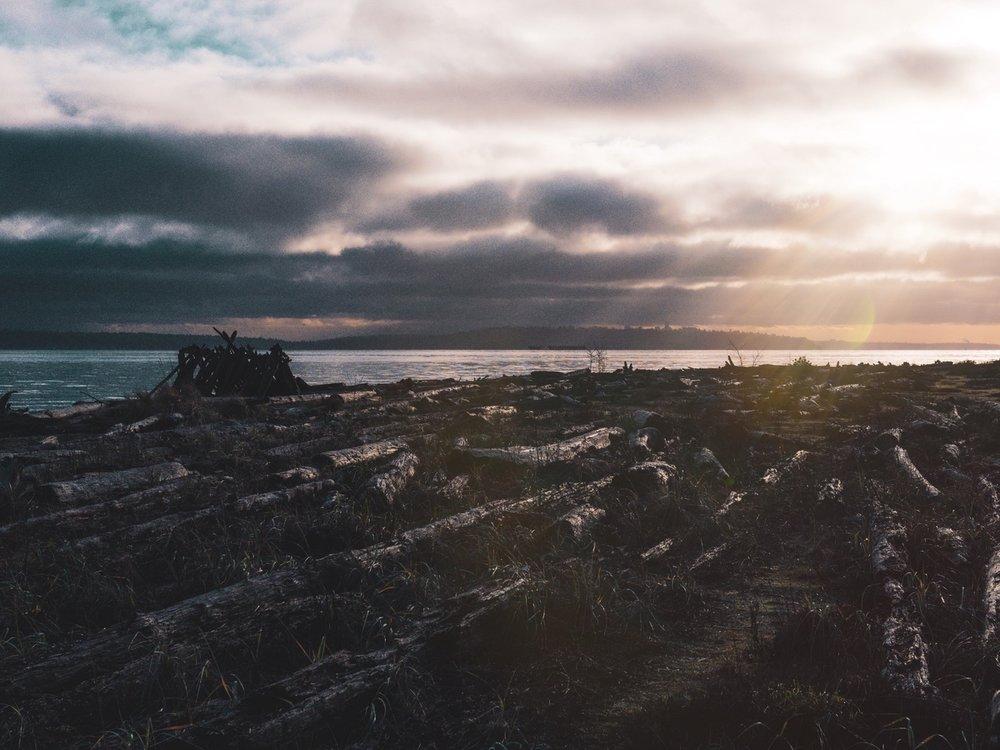Bainbridge Island Nature Photography0000.jpg
