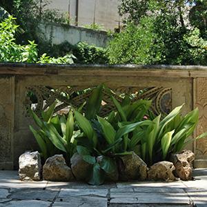 Private gardens Salento Sud-Est Apulia Puglia