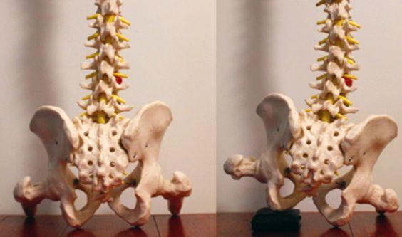 spotsylvania chiropractor wallet affects