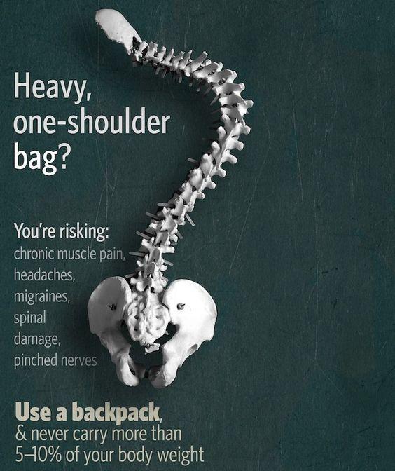 spotsylvania chiropractic shoulder bag
