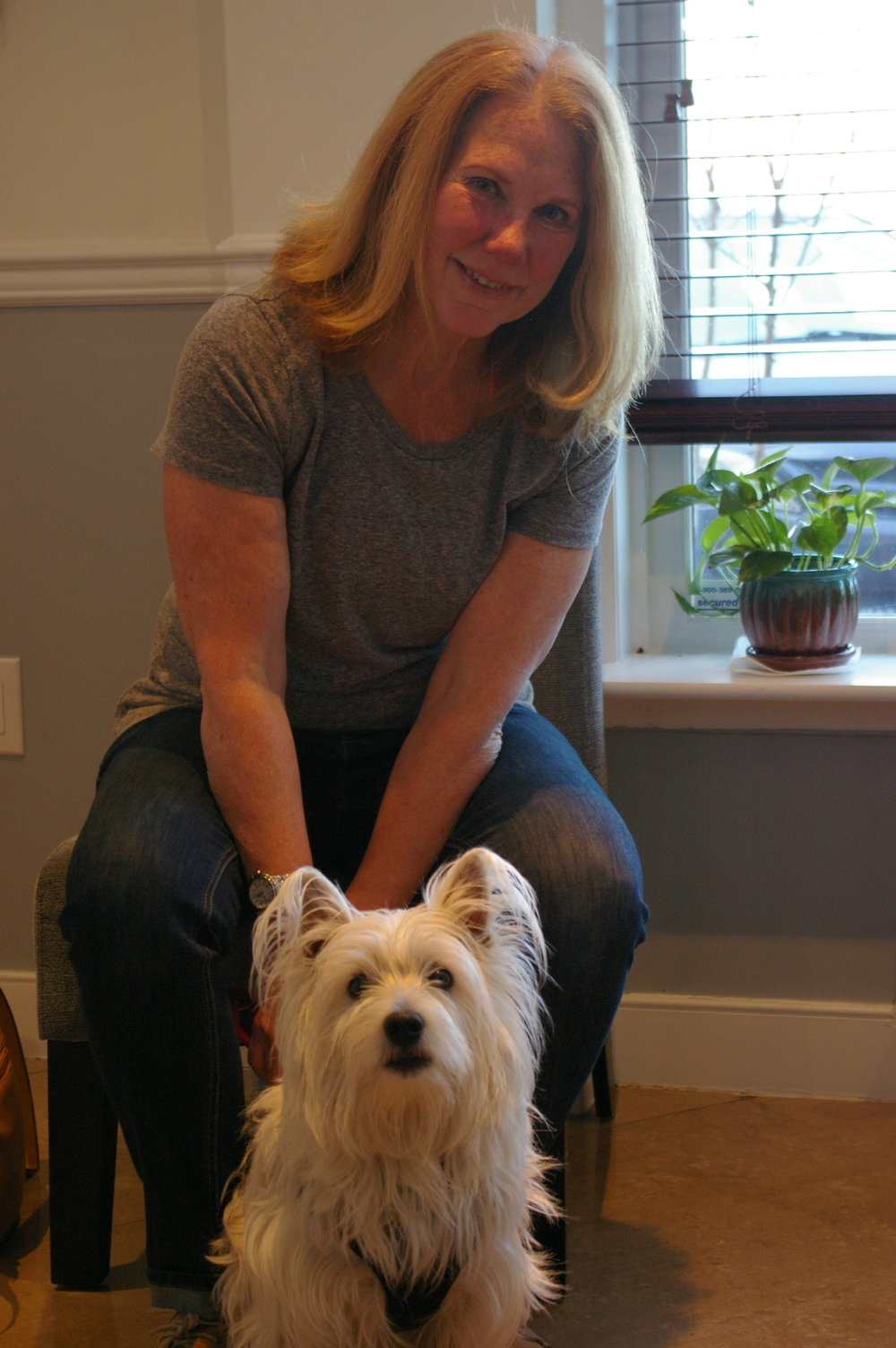 spotsylvania chiropractor dog friendly