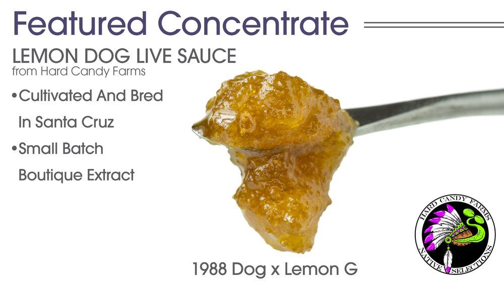 Lemon_Dog_Live_Sauce_HCF_Featured_010218.jpg