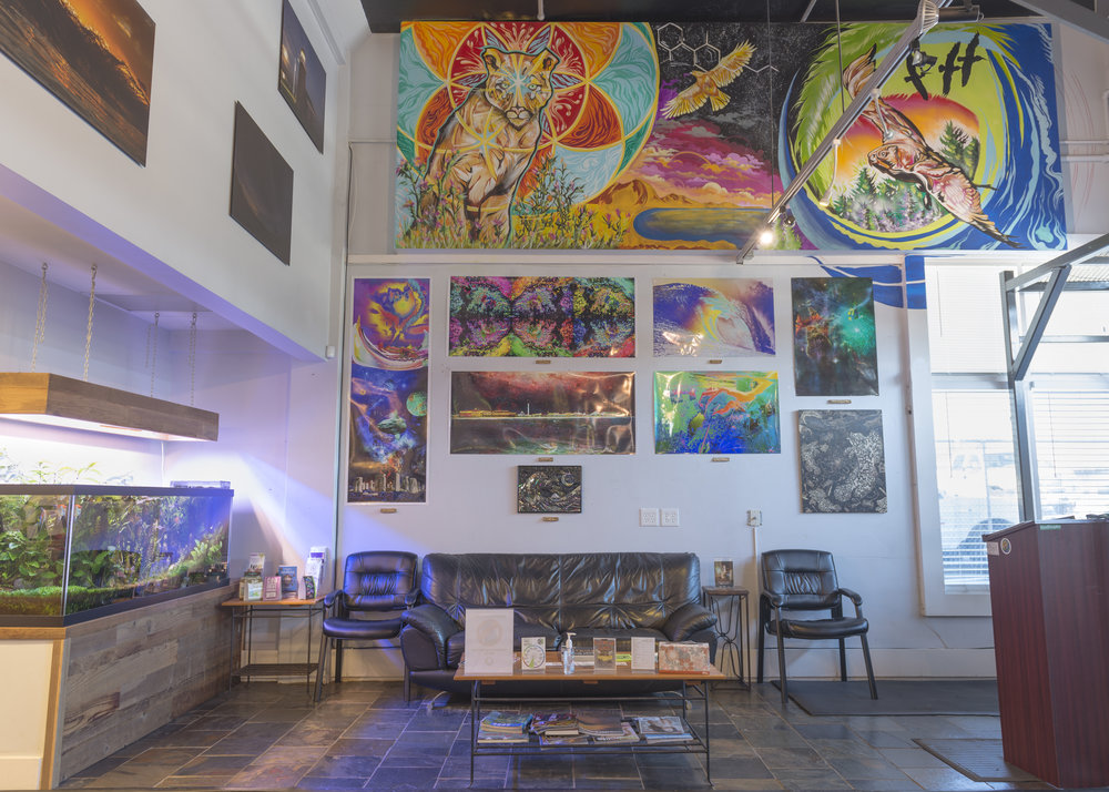 KindPeoples' supports local artists in Santa Cruz through First Friday showings, rotating artwork every month.