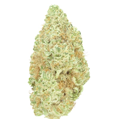 Spicy, resinous smoke provides a dreamy, uplifting buzz. -