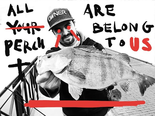 In 2019, a crack commando unit was sent to fish the streets of Utrecht. If you have a problem... if no one else can help... and if you can find them... maybe you can fish with... The Perch Team. #streetfishingisdead #streetfishingutrecht #perch #perchfishing #zander #urbanangler