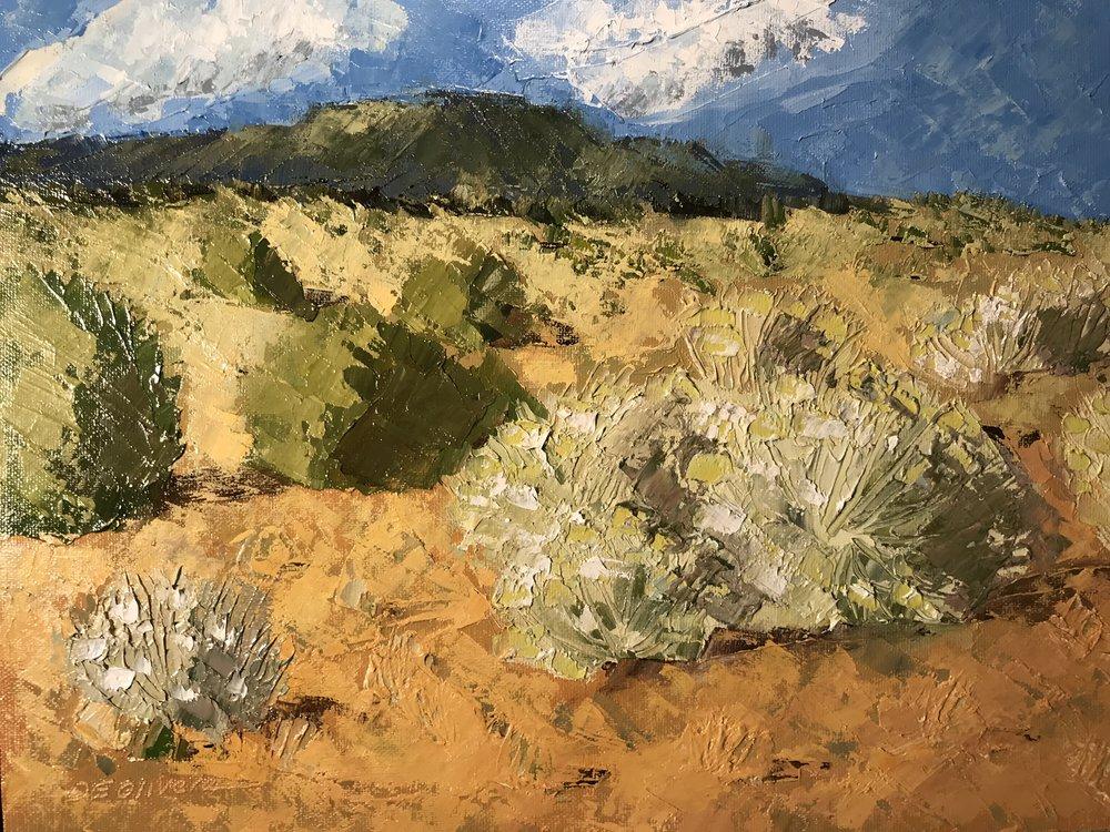 """""""Chimayo Desert"""""""