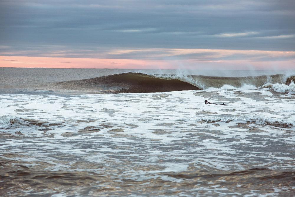 re 3727-SURFER-SHAWN ZAPPO.JPG