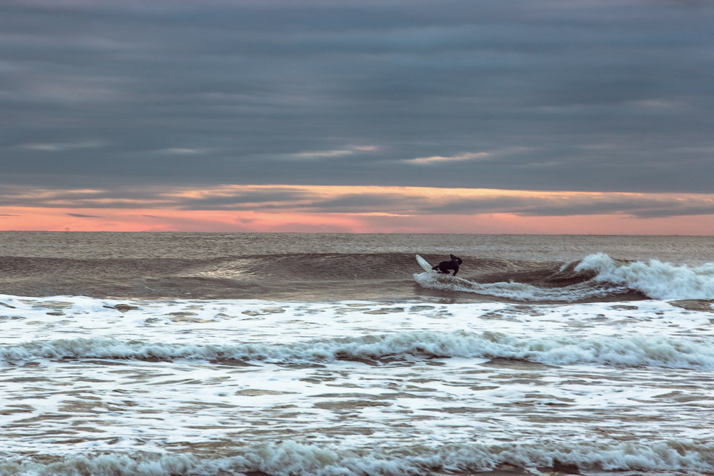 re 3755-SURFER-SHAWN ZAPPO.JPG