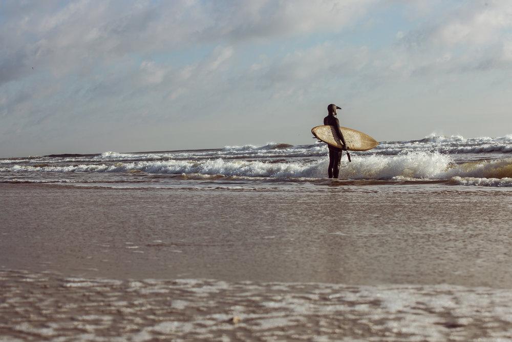 re 4129-SURFER-SHAWN ZAPPO.JPG