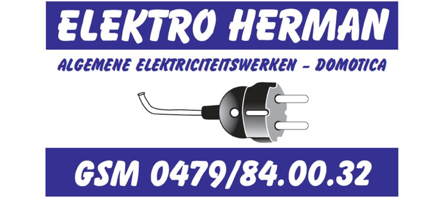 U17_Future_Elektro_Herman.png