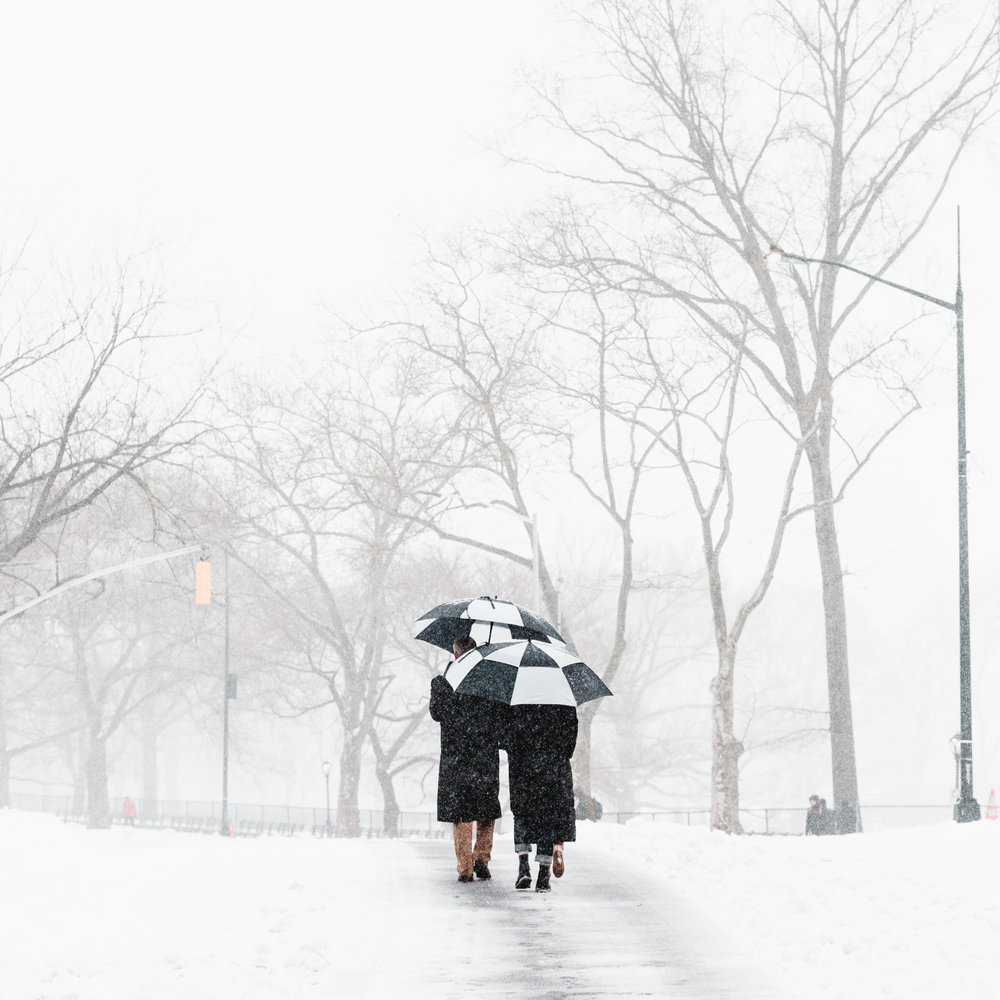 Central Park Umbrella Stella Snowstorm Winter New York