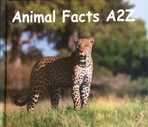 AnimalFactsAtoZ.jpg