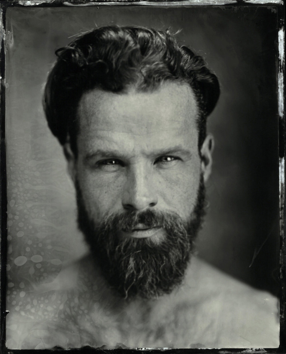 Title : Tree Matt   By: Jason  Chinchen    https://www.instagram.com/analogue_tintypes/