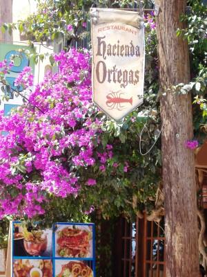 Hacienda Ortegas