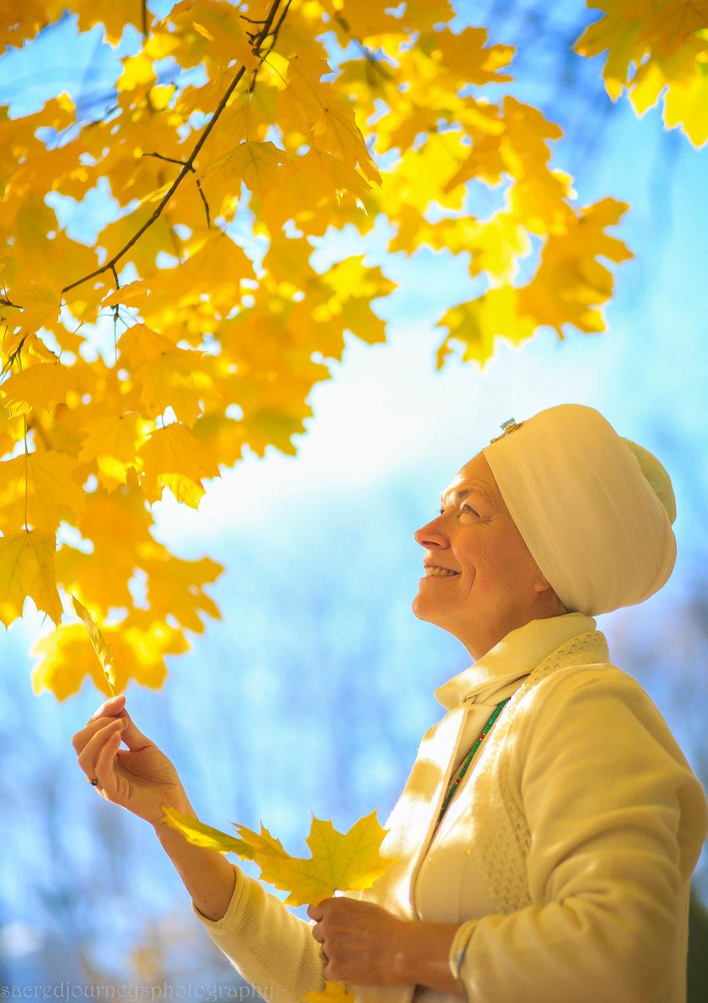 Nirbhe Kaur Autumn leaves November 2016 098.jpg