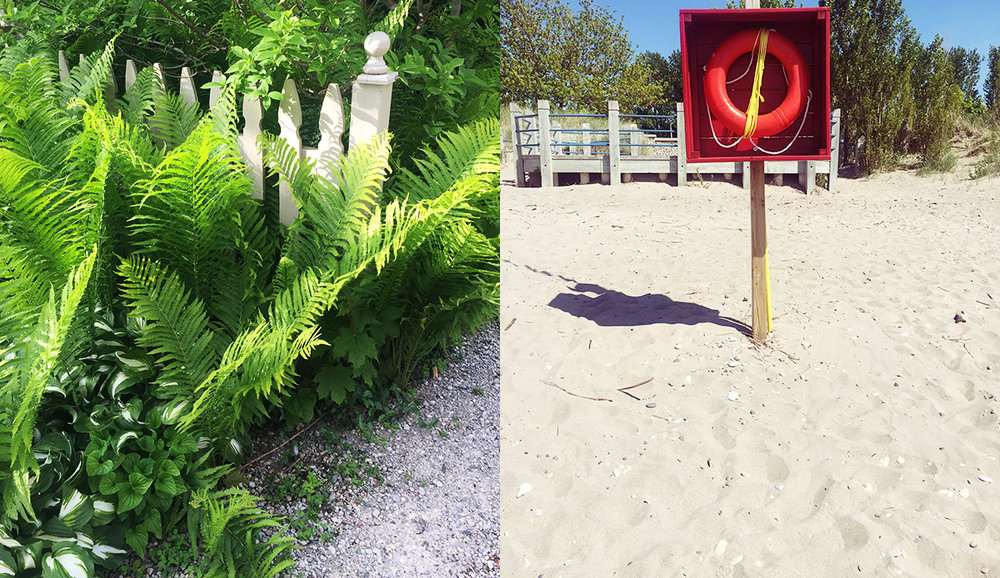 L: Greenery in Bayfield, ON; R: The beach in Kincardine, ON.