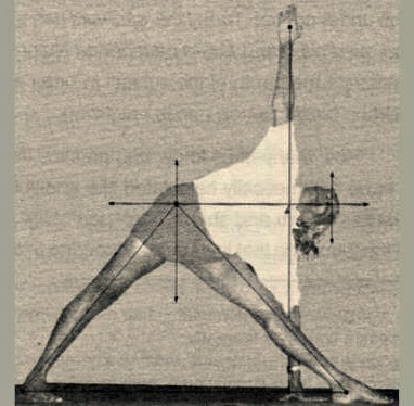 Triangle Pose Force Vector.jpg