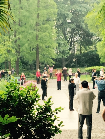 Shanghai residents practicing Qigong early in the morning at a local park. Qigong is a traditional Chinese system of physical exercises and meditation. Photo: Michelle Schurig