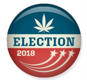 MJ Election Logo.JPG