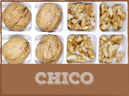 CHICO   Chico walnuts are relatively small in size with a high quality kernel and good shell seal, although poor in edible yields. Harvested early to mid-season, Chico walnuts are often planted as a pollinizer for  Vina walnuts.