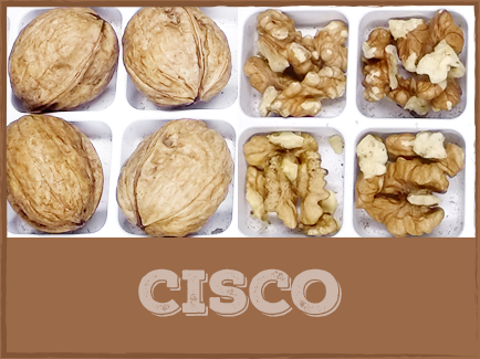 CISCO Cisco walnuts are harvested late in the season and have kernels comparable to those of a Franquette variety. They are generally used as a pollinizer for Howard and Chandler walnuts due to their moderate yield.