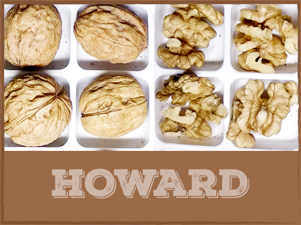 HOWARD Howard was introduced in 1979 by the University of California and is harvested early to mid-season. The nut is well-sealed and generally produces a high percentage of light kernels. Howard walnuts are able to be planted in high-density settings, due to their smaller growth habit.