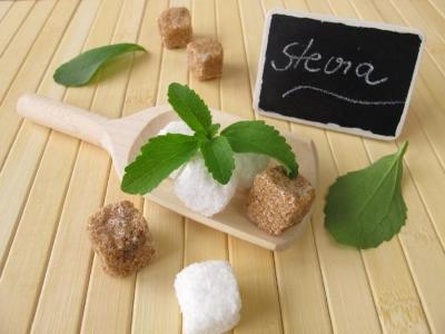 stevia-leaves-and-sugar-cubes.jpg