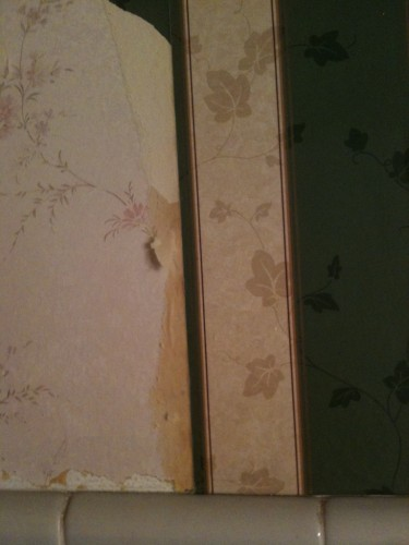 tearing off the Wallpaper Revealed the ORIGINAL Wallpaper hiding underneath