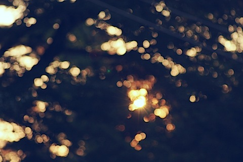 autumn_sunset_bokeh_by_DyingBeautyStock.jpg