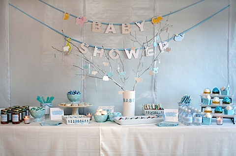 Blue-White-Gingham-Baby-Shower-1.jpg