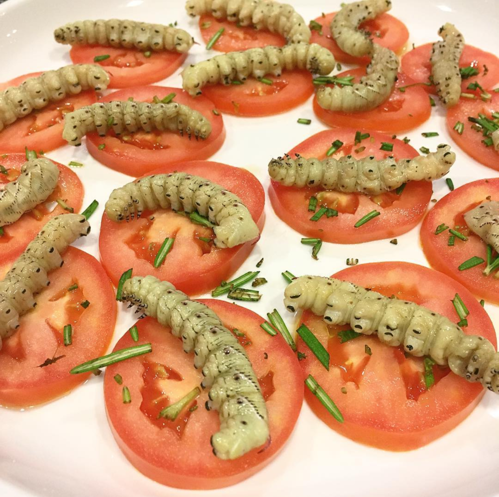 Hornworm caprese
