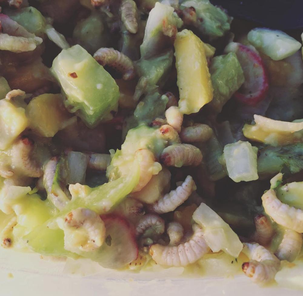 Waxworm Ceviche
