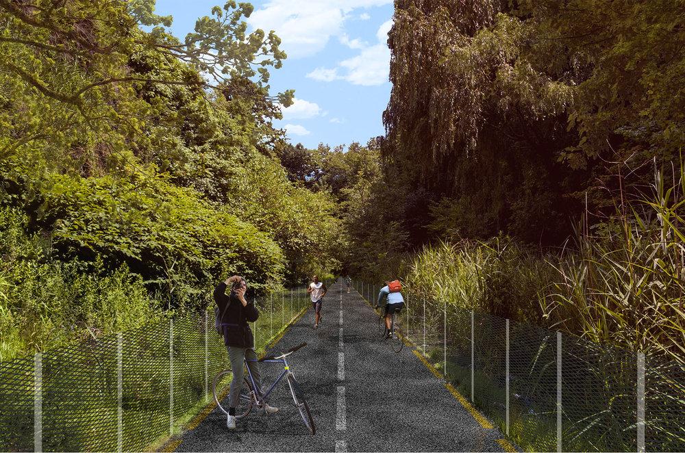 2019.03.05 BA Bike Path Collage 03.jpg