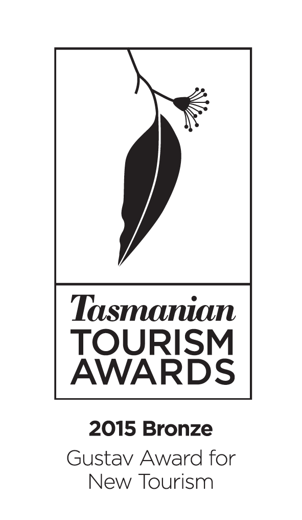 Bronze Gustav Award New Tourism 2015 - Standard.png