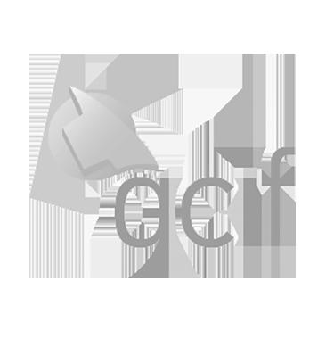QCIF.png