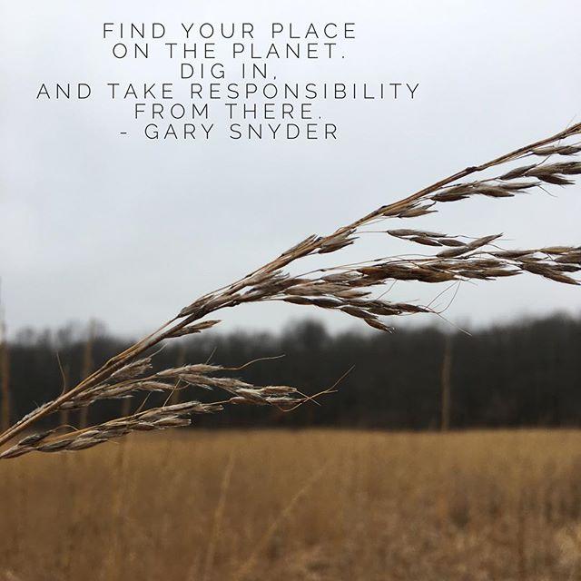 #mindfulness #mapmindfulness #mindfulday