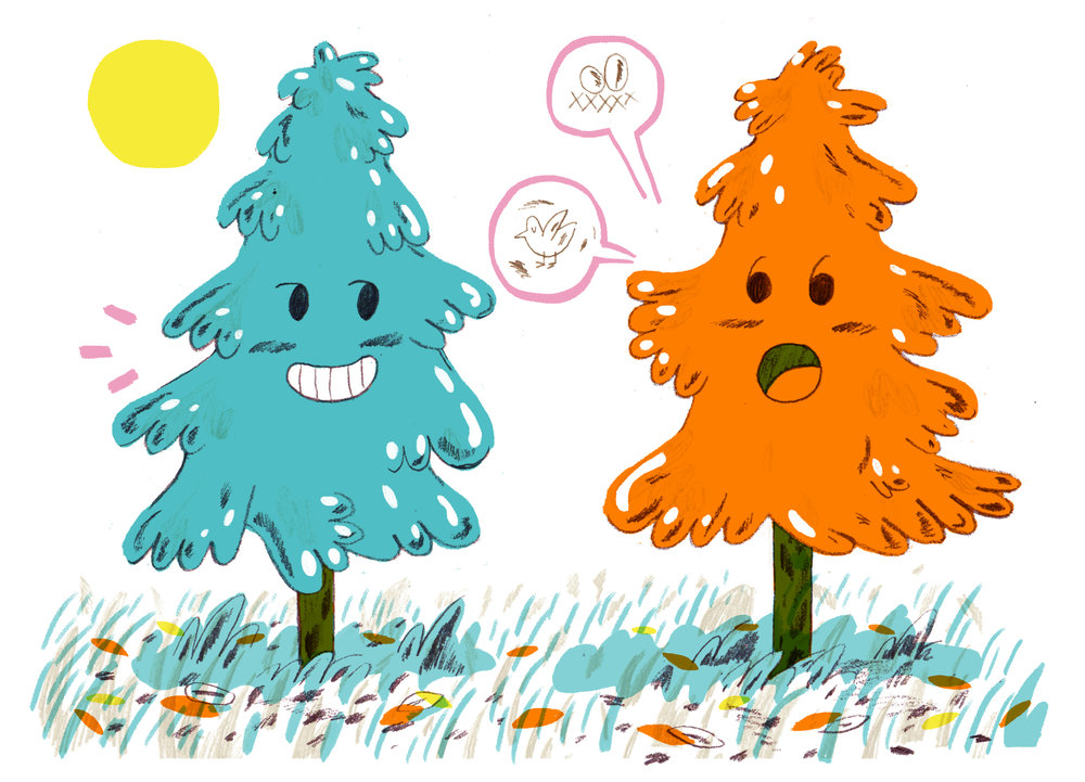 ANORAK FUN TREES.jpg
